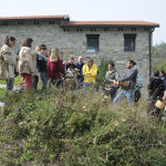 Riconoscimento e Raccolta Erbe Spontanee - Mongiardino